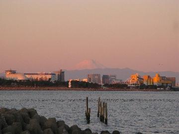 富士山@葛西臨海公園